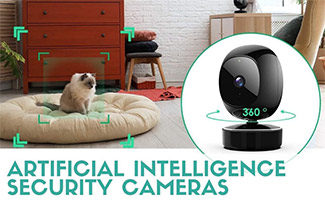 Cat being detected by AI camera (caption: Artificial intelligence Security Cameras)