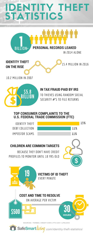 Identity Theft Statistics Infographic
