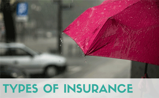 Red Umbrella In The Rain, Caption: Types Of Insurance