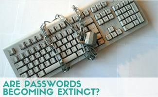 Zero Knowledge Proof: Are Passwords Becoming Extinct?